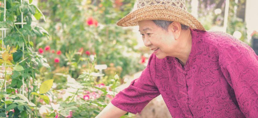 Senior woman enjoying gardening in an assisted living community.