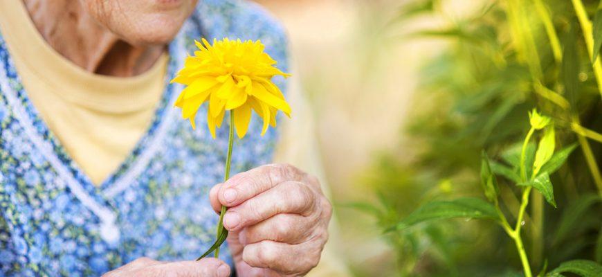 Senior Gardening benefits